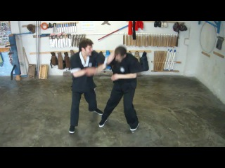 Armenian Wing Tsun, Chi Sao, technique of Snake and Crane, Dragon and Monkey, Sifu Hovhannes Musheghyan